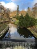 Schmaler Fluss im Park Stockfoto