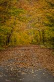 Schmaler Fokus des Feldweges im Herbst Stockfoto
