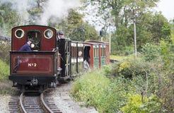Schmalspur-Dampf-Eisenbahn Stockfotos