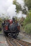 Schmalspur-Dampf-Eisenbahn Stockfoto