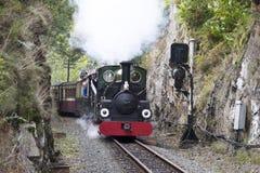 Schmalspur-Dampf-Eisenbahn Lizenzfreies Stockfoto