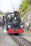 Schmalspur-Dampf-Eisenbahn Lizenzfreie Stockfotos