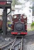 Schmalspur-Dampf-Schienen Stockbild