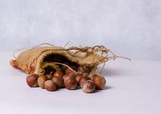 Schmeißen Sie Tasche voll von Haselnüssen, rustikales Artfoto raus Lizenzfreies Stockfoto