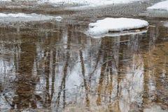 Schmelzen Sie Wasser im Wald, in den Reflexionen und in den Kreisen auf dem Wasser Stockfotografie