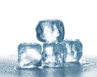 Schmelzende Eis-Würfel Stockbilder