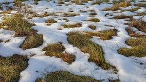 Schmelzende Nahaufnahme des Schnees stock footage