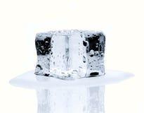 Schmelzender Eiswürfel lokalisiert auf Weiß Lizenzfreie Stockfotografie