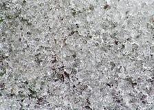 Schmelzender Schnee Lizenzfreies Stockbild