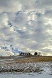 Schmelzender Schnee auf der Weide Stockfotografie