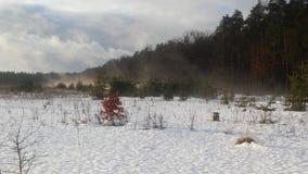 Schmelzender und verdunstender Schnee Lizenzfreies Stockbild