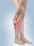 Schmerz in der Frauenkniesehne Lizenzfreies Stockfoto