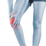 Schmerz im Frauenknie Stockfoto