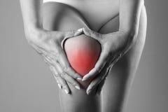 Schmerz im Knie Schmerzen Sie im menschlichen Körper auf einem grauen Hintergrund Stockfotografie