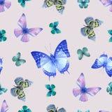Schmetterling 07 stock abbildung