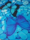 Schmetterling Fotografia Stock Libera da Diritti