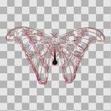 Schmetterling auf einem Stift für Kollektoren lizenzfreie stockfotos