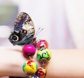 Schmetterling auf einer girl's Hand mit buntem Armband Lizenzfreies Stockbild