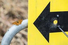 Schmetterling auf Tor Lizenzfreie Stockfotografie