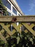 Schmetterling des roten Admirals auf einem Zaun im Wintersonnenschein Lizenzfreies Stockbild