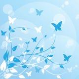 Schmetterling fliegen Stockbilder