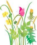 Schmetterling im Gras Lizenzfreies Stockfoto