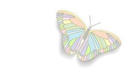Schmetterling mit offenen Flügeln Lizenzfreies Stockfoto