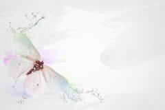 Schmetterling mit spritzt Lizenzfreie Stockfotografie