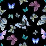 Schmetterling nahtlose 05 Lizenzfreie Stockfotos