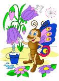Schmetterling sammelt Tau von der Blume Stockbilder