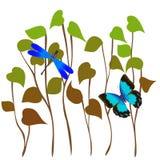 Schmetterling und Libelle im Gras Lizenzfreie Stockbilder