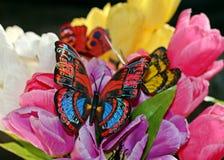 Schmetterling und Tulpen Stockfotos