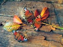 Schmetterlinge auf einem alten hölzernen Brett lizenzfreie stockfotografie