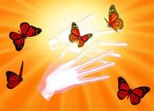 Schmetterlinge auf Frau ` s Händen Im Bewegungskonzept lokalisiert auf einem S Stockfotografie