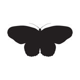 Schmetterlings-Idee Leuconoe Papierdrachen Skizze von Lizenzfreies Stockfoto