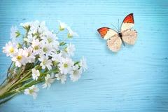 Schmetterlings- und Blumengänseblümchen auf einem hölzernen Hintergrund Stockfoto