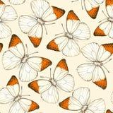 Schmetterlingsaquarellmuster lizenzfreie abbildung