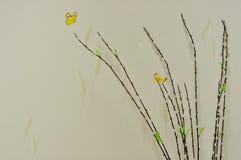 Schmetterlingsbild und Weißbaum mit vier Hintergründen Stockbilder
