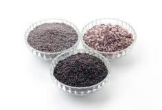 Schmetterlingserbsen Reis, Beerenreis und schwarzer klebriger gaba Reis Lizenzfreies Stockfoto