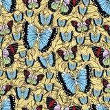 Schmetterlingskarikatur, die nahtloses Muster, Vektorhintergrund zeichnet Abstraktion gezeichnetes Insekt mit buntem Pastellflüge lizenzfreie abbildung
