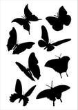 Schmetterlingsvektor Lizenzfreies Stockfoto