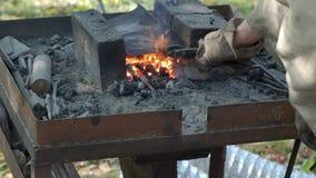 Schmied erhitzte die Eisenstange in brennenden Kohlen in der Schmiede stock video