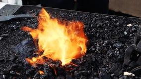 Schmiedeschmiedenfeuer mit schwarzen Kohlen und Stahlteil stock video footage
