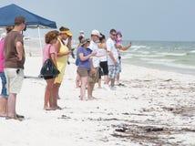 Schmieröl wäscht sich an Land im Pensacola-Strand Lizenzfreie Stockfotos