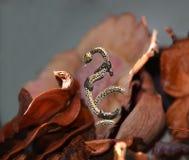 Schmuck in einer Form der Schlange mit Kristallen Lizenzfreie Stockfotografie