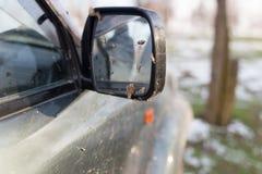 Schmutz auf dem Spiegel des Autos Stockfotografie
