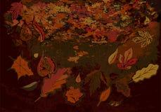 Schmutz Autumn Texture Lizenzfreie Stockfotos