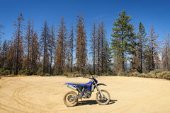 Schmutz-Fahrrad im Wald lizenzfreie stockfotos