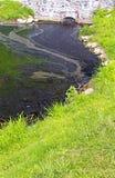 Schmutz im Teich Stockbild