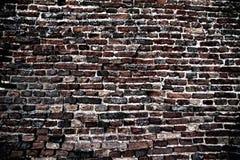 Schmutz-Wand-Hintergrund und Beschaffenheits-Element Lizenzfreies Stockfoto
